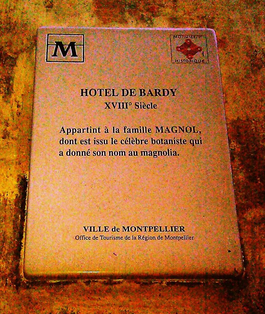 Les noms mots pierre chanut nymeo cr ation de noms de for Les noms des hotels